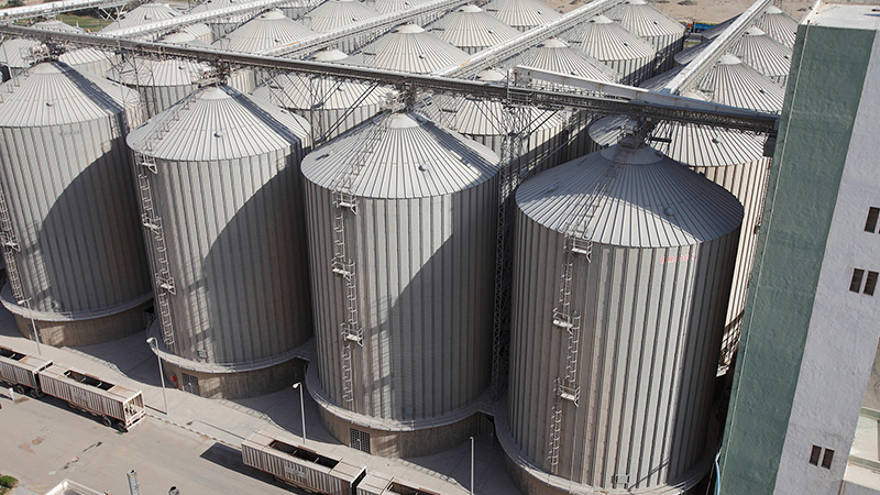 GrainCorp's $10 million dollar deal to buy stake in Egyptian Five ...